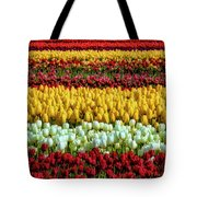 Endless Beautiful Tulip Fields Tote Bag