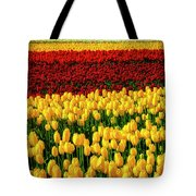 Endless Tulip Fields Tote Bag