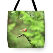 English Robin Erithacus Rubecula Tote Bag
