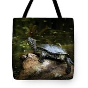 European Pond Turtle Sitting On A Trunk In A Pond Tote Bag