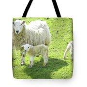 Ewe With Lambs Tote Bag