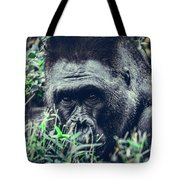 Eyes Speak Tote Bag by Dheeraj Mutha