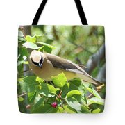 Eying The Prize Tote Bag by Sally Sperry
