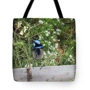 Fairy-wren 3 Tote Bag