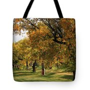 Fall Ave Tote Bag
