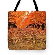 Fall Cherry Trees Tote Bag