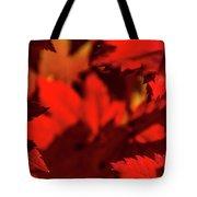 Fall Coffee Mug Tote Bag