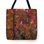 Fall Collage Tote Bag