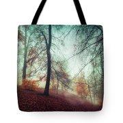 Fall Feeling Tote Bag