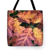 Fall Flames Tote Bag by Whitney Goodey