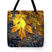 Fall Has Sprung Tote Bag