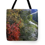 Fall Meets Winter Tote Bag