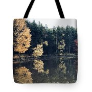 Fall Mirrors 2 Tote Bag