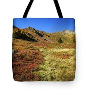 Fall On The Mountains Tote Bag