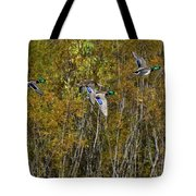 Fall Time Mallards Tote Bag