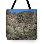 Family Of Saguaro Tote Bag