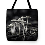 Fanciful Fungus-2 Tote Bag