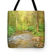 Fawn Drinking From Stream Tote Bag