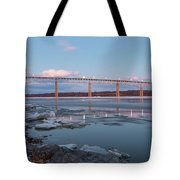 February Evening At Charles Rider Park Tote Bag
