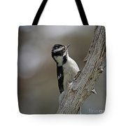 Female Downy Woodpecker Tote Bag