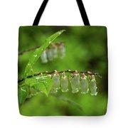 Fetter-bush Tote Bag by Louis Dallara