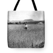 Field Of Wheat Campbell S Plains  Darling Downs Tote Bag