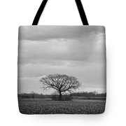 Fields Bode The Snow Tote Bag by Davor Zerjav