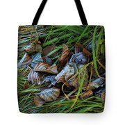 First Frost In Sweden Tote Bag