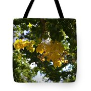 First Golden Leaves Tote Bag