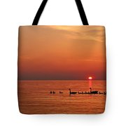 Fishy Geese Sunset Tote Bag