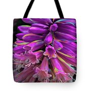 Flamingo Tote Bag by Cindy Greenstein
