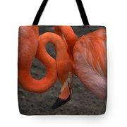 Flamingo Couple Tote Bag