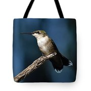 Flick Of The Tongue - Ruby-throated Hummingbird Tote Bag