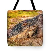 Florida Gator 1 Tote Bag