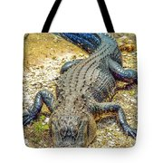 Florida Gator 2 Tote Bag
