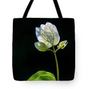 flowers of a Bougainvillea w4 Tote Bag