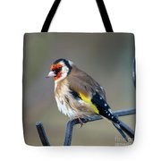Fluffy Goldfinch Tote Bag