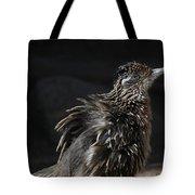 Fluffy Roadrunner Tote Bag
