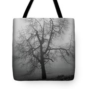 Foggy Tree In Black And White Tote Bag by William Selander