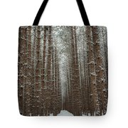Forest In Sleeping Bear Dunes In January Tote Bag