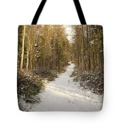 Forest Track In Winter Tote Bag