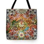 Forms Of Nature #1 Tote Bag