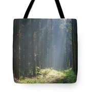 Forrest And Sun Tote Bag