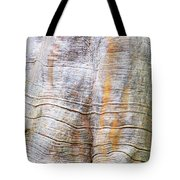 Foster Trees 4 Tote Bag