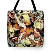 Fractured Viewpoint Tote Bag