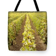 French Vineyards Of The Champagne Region Tote Bag