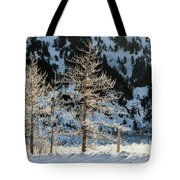 Frost Covered Trees On The Portage Glacier Highway Alaska Tote Bag