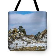 Frosting On The Backbone Tote Bag