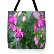 Fuchsia Tote Bag