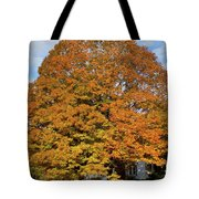 Full On Orange Tote Bag